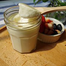 自制超好吃的原味老酸奶 天然无添加