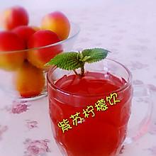 紫苏柠檬饮饮