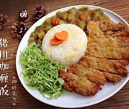猪排咖喱饭#奇妙咖喱,拯救萌娃食欲#的做法