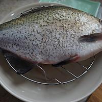 红烧武昌鱼的做法图解1