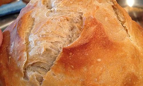 免揉基础面包,简单快手满屋小麦香的做法