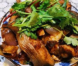 铁锅鮰鱼的做法