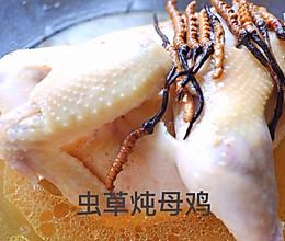 冬虫夏草炖母鸡的做法