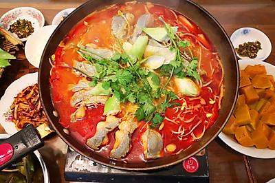贵州酸汤鱼(烧青椒蘸水版)