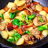 #就是红烧吃不腻!#土鸡土豆粉条一锅炖的做法图解16