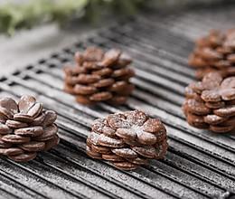 巧克力松果饼干的做法
