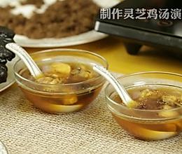灵芝鸡汤-萃取壶来帮忙的做法