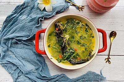 一口鲜香—黄辣丁鱼汤