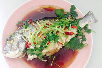 清蒸海鲈鱼(微波炉版)