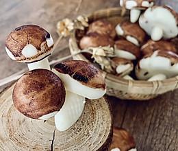#带着零食去旅行!#蘑菇野餐包的做法