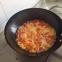 西红柿蛋汤的做法图解6