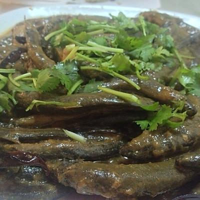 酱炖泥鳅鱼