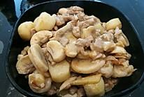 骨汤炖山药白菇的做法