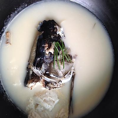红烧鱼段和鱼头豆腐汤