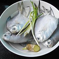 香煎小鲳鱼的做法图解1
