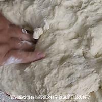 老妈多年经验总结出的蒸包子松软不塌陷(附茴香猪肉包子做法)的做法图解7