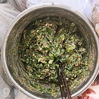 羊肉香菜饺子的做法图解9