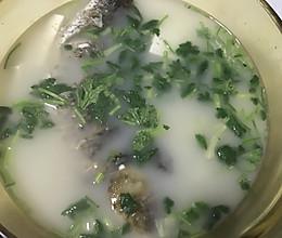 孕期滋补鲫鱼汤的做法