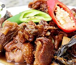 红焖野生天鹅肉--威厨艺的做法