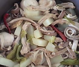 砂锅肚丝的做法
