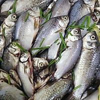 香酥炸鱼的做法图解2