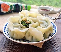 荠菜鲜肉饺子#鲜香滋味,搞定萌娃#的做法