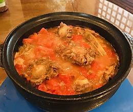 西红柿炖牛尾汤的做法