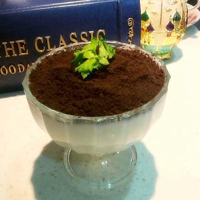 酸奶小盆栽的做法 步骤3