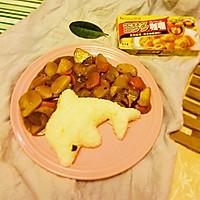 鸡汁土豆咖喱饭#百梦多Lady咖喱#