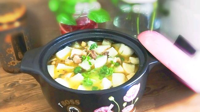 #快手又营养,我家的冬日必备菜品#羊肉萝卜汤的做法