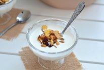 自制原味酸奶的做法