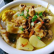 猴头菇炖鸡汤