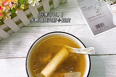 潮汕汤品4⃣️老鸭陈皮汤