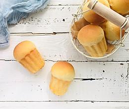 金枪鱼沙拉蘑菇包的做法