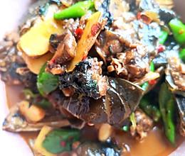 红烧甲鱼的做法