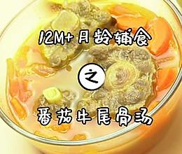 番茄牛尾骨汤的做法