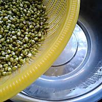 自制绿豆芽的做法图解3
