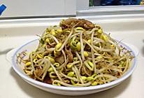 豆芽菜炒肉的做法