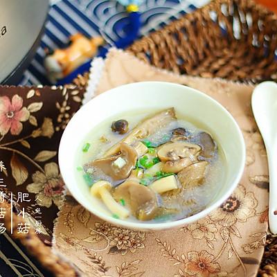 养生菌菇汤(炖)