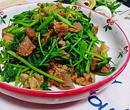 香菜炒羊肉的做法