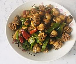 青椒爆炒扇贝肉的做法