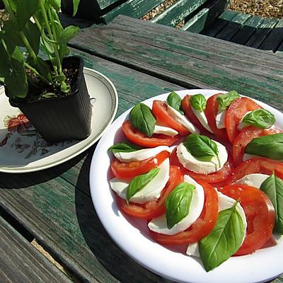 意式西红柿沙拉