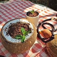 椰子冻盆栽--如何自制椰子冻的做法图解9