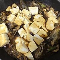 嘎鱼炖豆腐的做法图解8