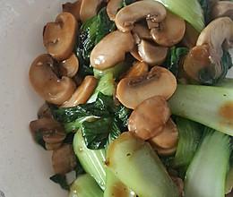口蘑油菜的做法