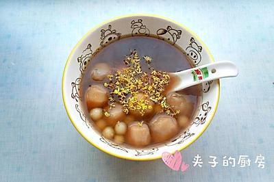桂花糖芋苗