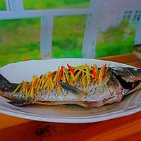 健康饮食----清蒸鲫鱼的做法图解6