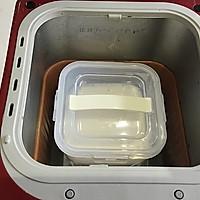 酸奶盆栽的做法图解5