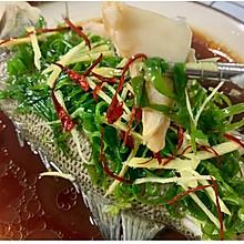 清蒸鲈鱼 鲜到一个人能吃一整条