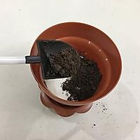 酸奶盆栽的做法图解11